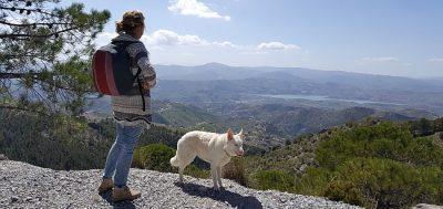 I Am Reizen Andalusië