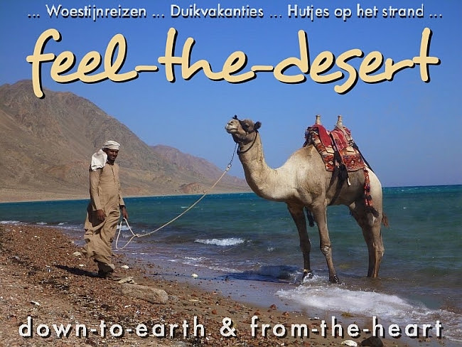 http://www.feel-the-desert.com/index.html